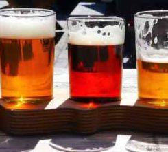 Bratislava Brewery Tour Th